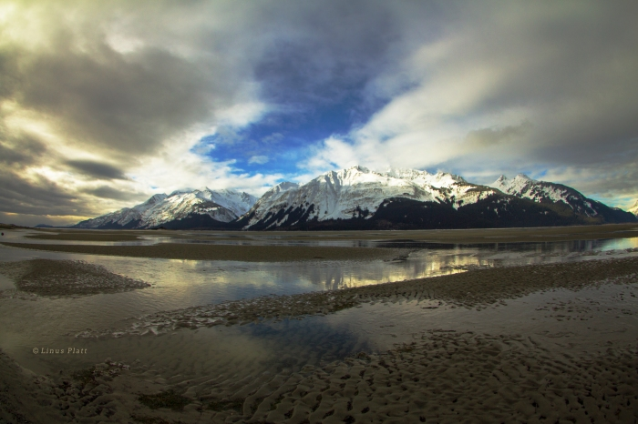 Chilkat Low Tide