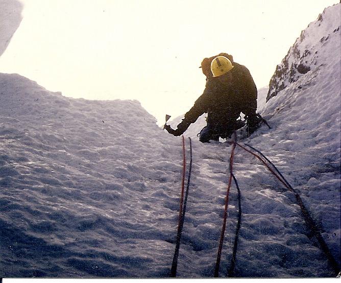 Mt Athabasca '8601