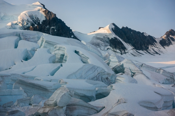 Moore Icefall