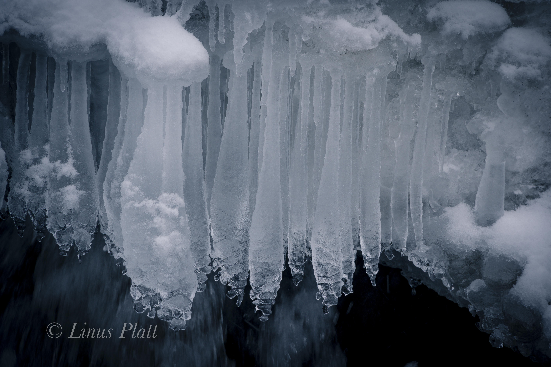 Northern BC Canyon-6