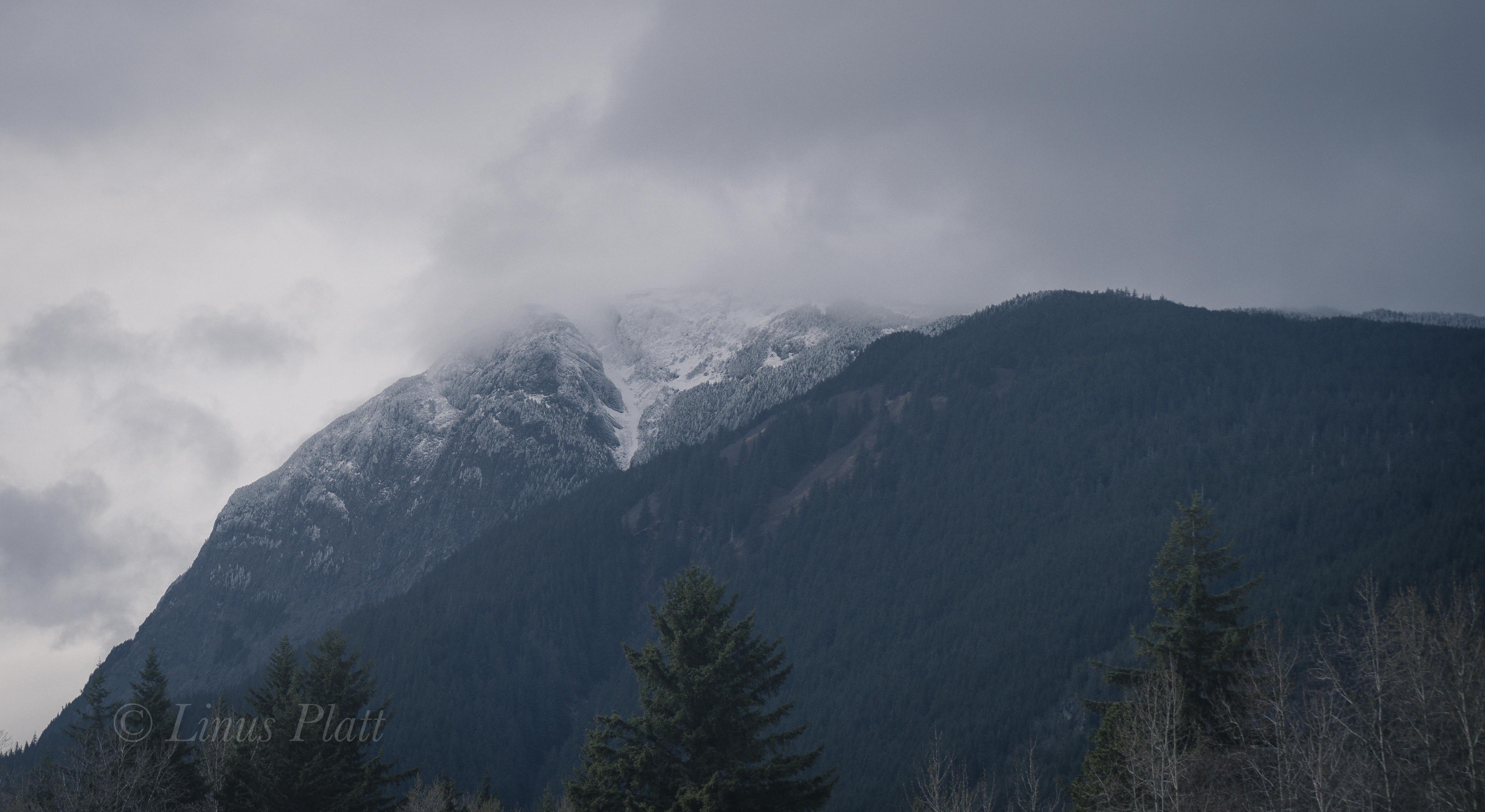 Winter Ripinski-10