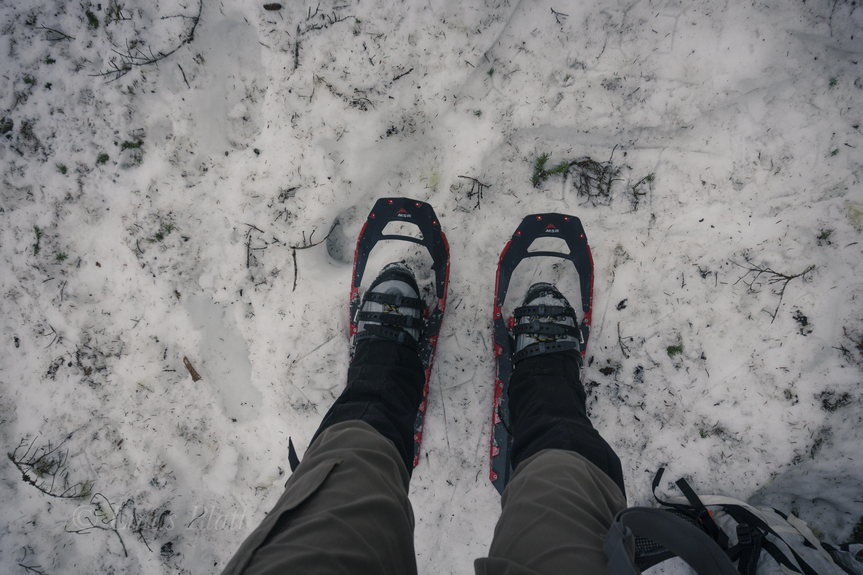 Winter Ripinski-4