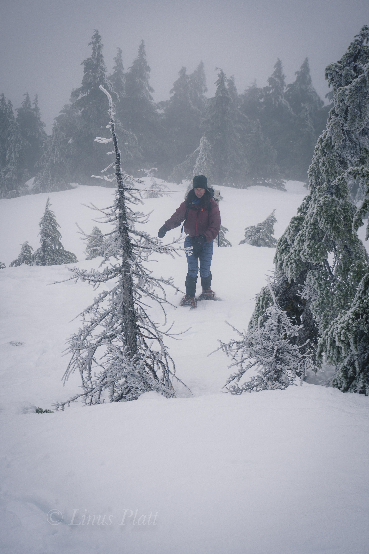 Winter Ripinski-8